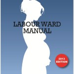 labourmanual13
